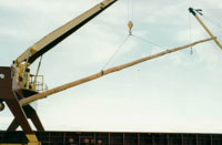 crane lifting timber in place